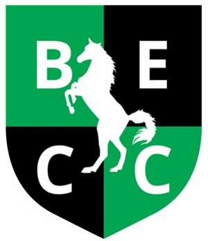 Burwell and Exning Cricket Club Logo