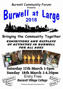Burwell At Large 2018 Poster